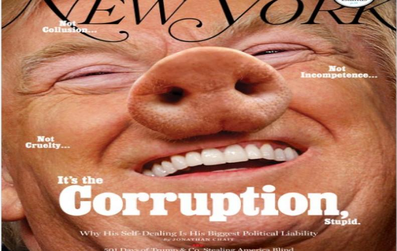 President Trump as a Pig on a New York Magazine cover