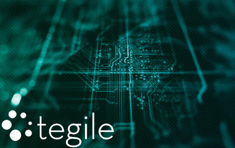 Tegile Systems a flash storage company's acquisition by Western Digital likely to Happen,