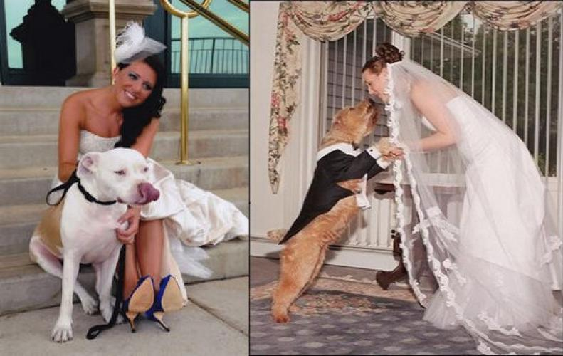 World's Weirdest People who Married to Animals and Done Craziest Things After that
