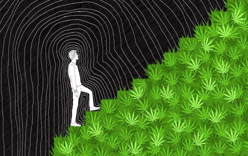 App that Join You With Marijuana Buyers and Dealers: Read The Complete Story