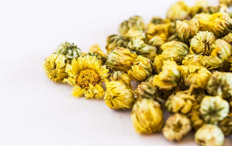 Chrysanthemum Tea is the Best Caffeine free Alternative for Your Body