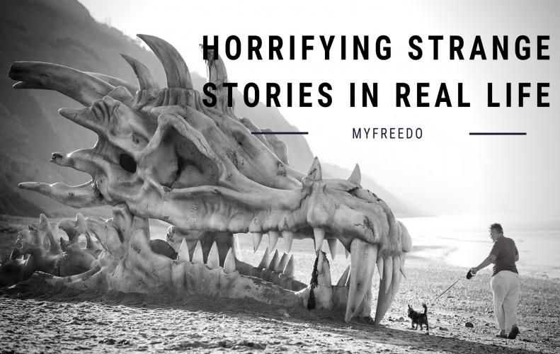 5 Horrifying Strange Stories from Real Life