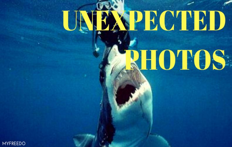 10 Unexpected Pics Which Will Leave You Amazed