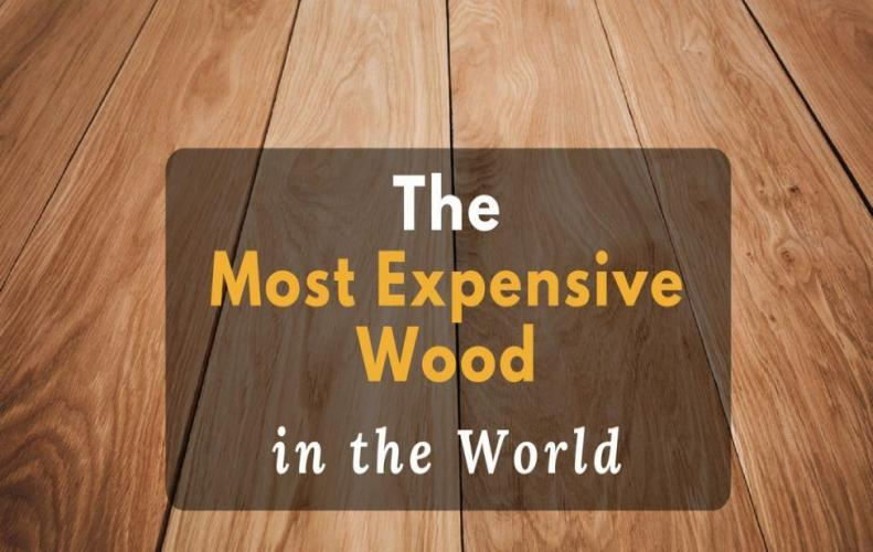 The Most Expensive Wood in the World 2018