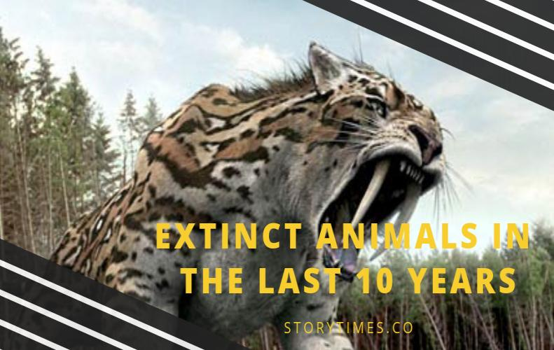 Top 7 Extinct Animals In The Last 10 Years