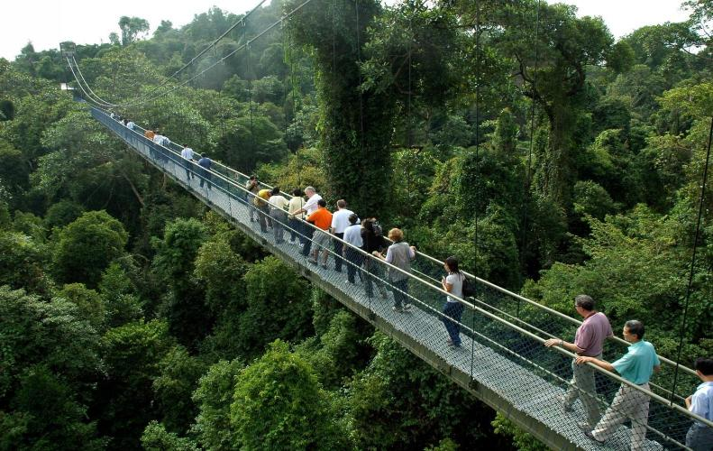 Best National Parks in Singapore | The List of Top 10