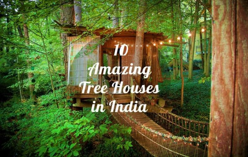 Best Tree House Resorts In India | The List of Top 10