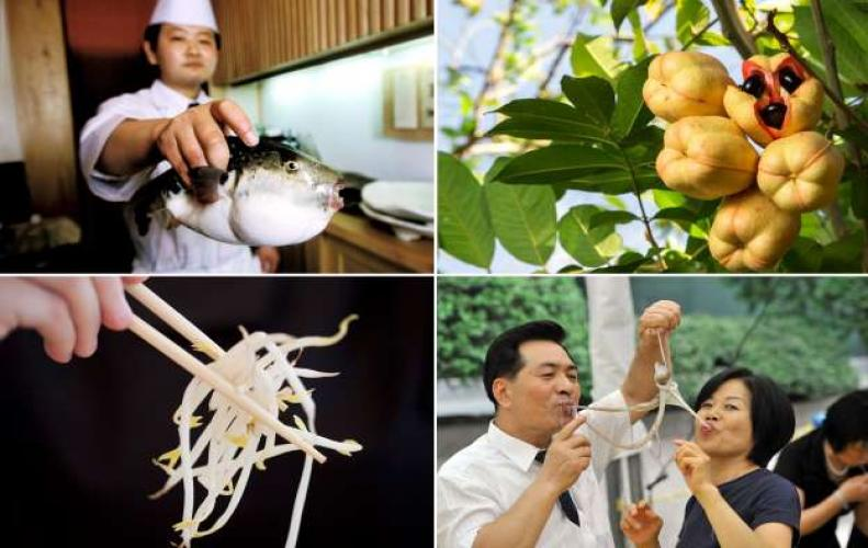 Most Poisonous Foods in the World | The List of Top 10