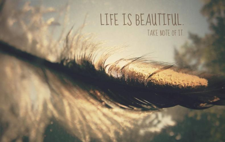 Best Quotes that will Inspire You to Live a Beautiful Life