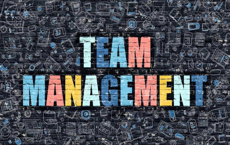 Best Team Management Tips to Get Success at Workplace