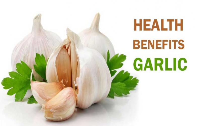Most Amazing Health Benefits of Garlic while Eating Daily...