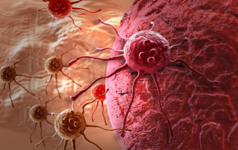 इस प्रकार से पाएं कैंसर जैसी जानलेवा बीमारी पर  काबू...