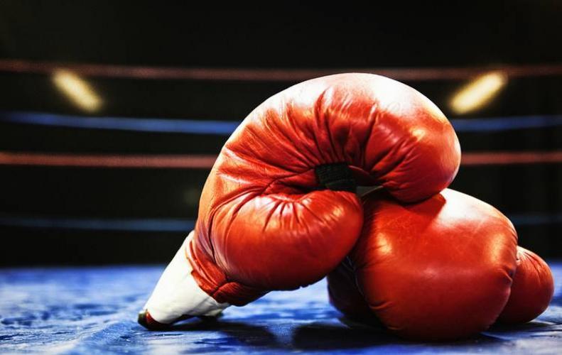 28 जनवरी से दिल्ली में होगा 'इंडिया ओपन अंतरराष्ट्रीय मुक्केबाजी टूर्नामेंट'...