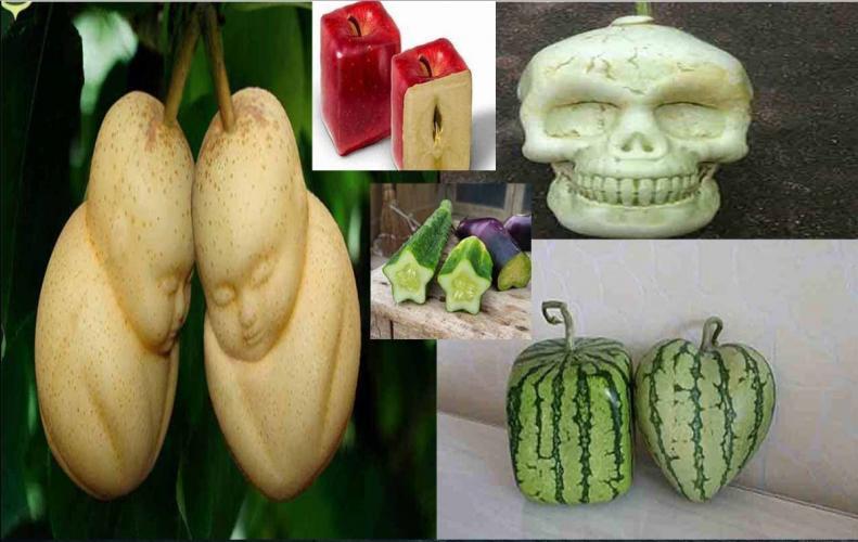फल सब्जियों के मॉडर्न लुक, कोई लाफिंग बुद्धा जैसी तो कोई दिखती कंकाल खोपड़ी