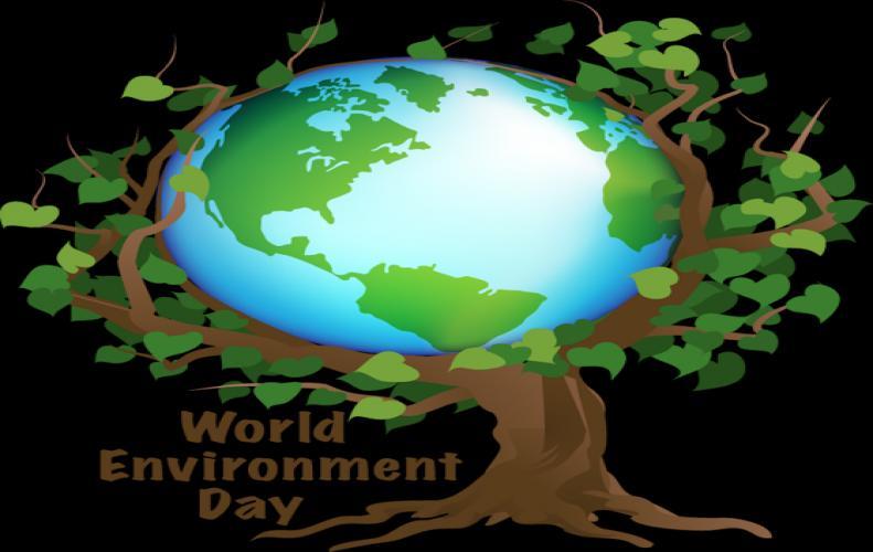 विश्व पर्यावरण दिवस : विश्व के लिए ये पांच बड़ी चुनौतियां बन रही है पर्यावरण के विनाश का कारण...