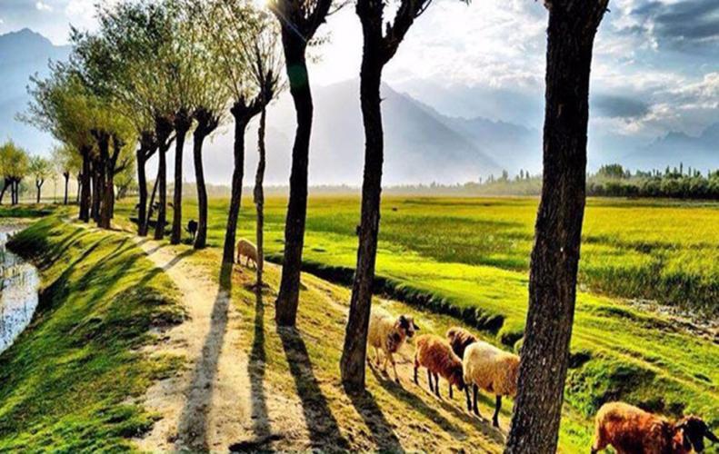 ये है वो भारत के खूबसूरत गांव जिनको घूमने पर आप भूल जाओगे अपने आप को...