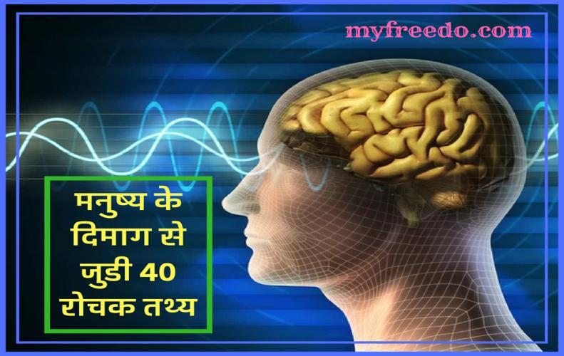 मनुष्य के दिमाग से जुडी 40 रोचक तथ्य | Interesting Facts About Man's Brain in Hindi