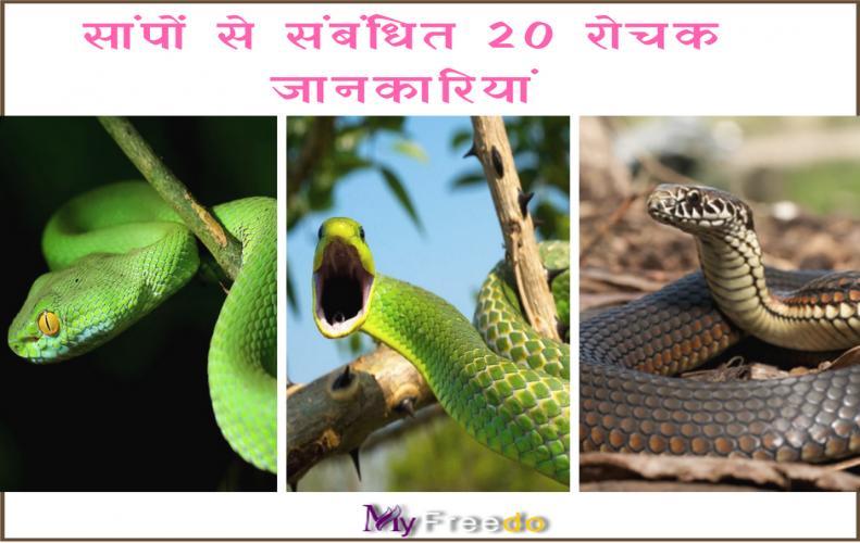 सांपों से संबंधित 20 रोचक जानकारियां | 20 Interesting Facts About Snakes in Hindi
