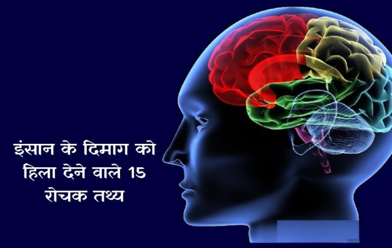 इंसान के दिमाग को हिला देने वाले 15 रोचक तथ्य |  Amazing Facts in Hindi