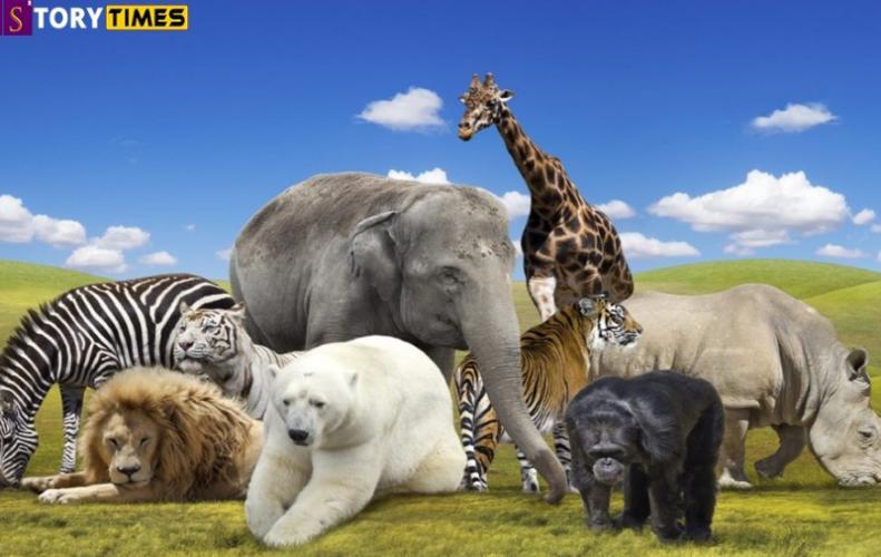 जानवरों के बारे में 21 रोचक तथ्य | Interesting Facts about Animal In Hindi