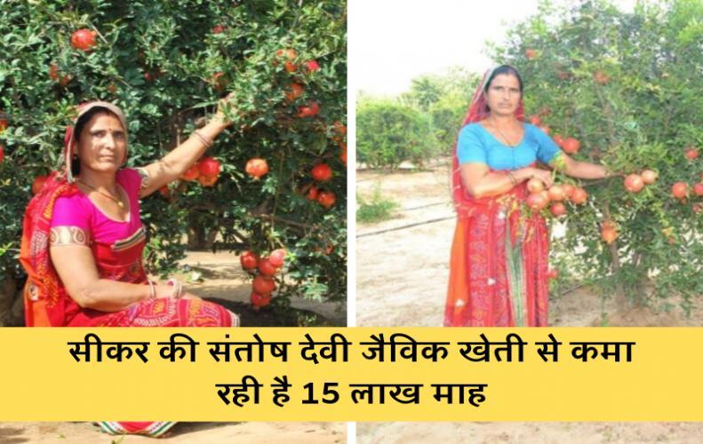 सीकर की संतोष देवी जैविक खेती से कमा रही है 15 लाख माह | Santosh Devi khedar Success story in Hindi
