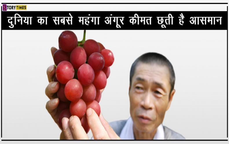 दुनिया का सबसे महंगा अंगूर कीमत छूती है आसमान | World Most Expensive Grapes In Hindi